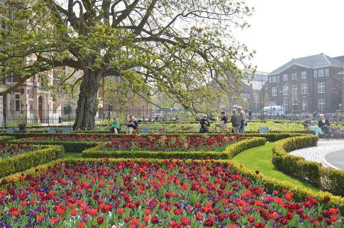 Tuin Rijksmuseum