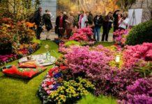 Vernieuwd concept voor tuinidee hortipoint