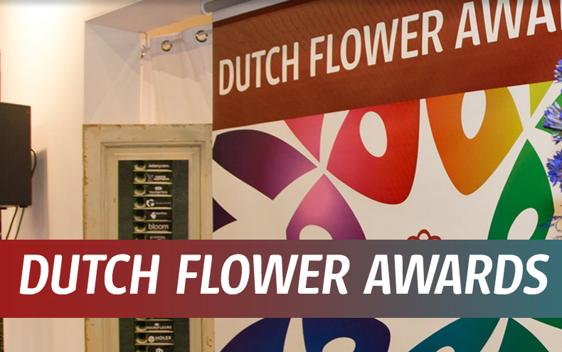 Dutch Flower Award