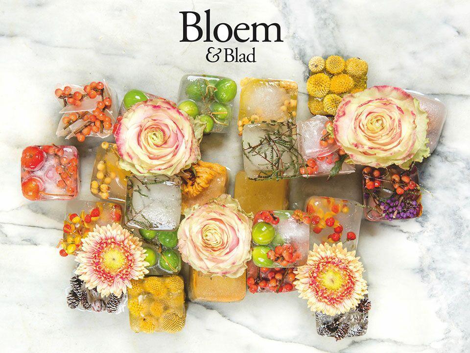 Redactie Bloem en Blad