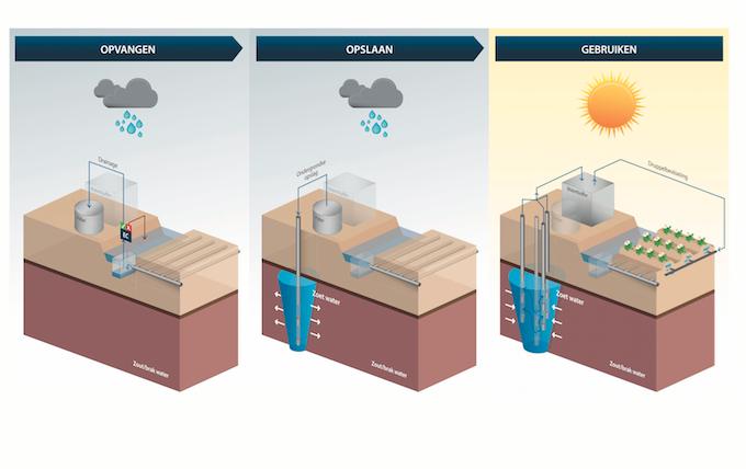 Spaarwater drainagesysteem Borgsweer