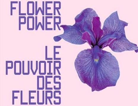 Flower Power Chaumont-sur-Loire