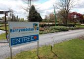 Doorbraak in financiering bomenonderzoek - Sortimentstuin-Harry-vd-Laar-170x120