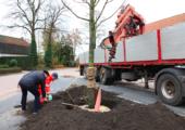 Doorbraak in financiering bomenonderzoek - klein-boom-planten-gemeente-170x120