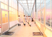 'Houdoe' - glastuinbouwonderzoek-bleiswijk-170x120