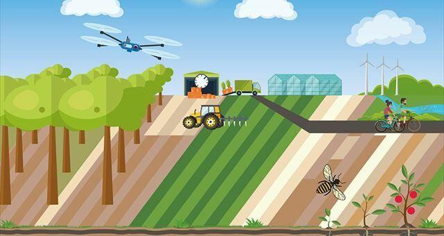 LTO: In 2030 emissieloos en residuvrij kweken - Illustratie