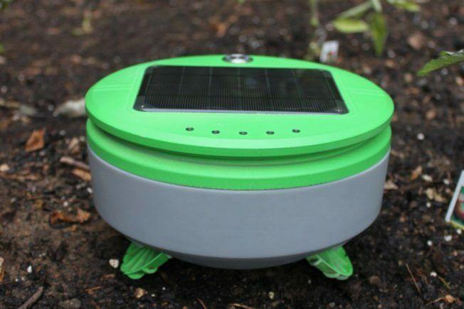 LTO: In 2030 emissieloos en residuvrij kweken - Robotwieder-652x435
