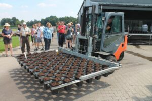 forklift potted roses at lakei nurseries
