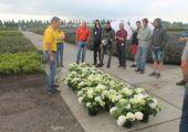 'Met haken voor vogelvoer verkoop je ook meer planten' - intro-telermaat-zomertour-remmen-hortensia-170x120