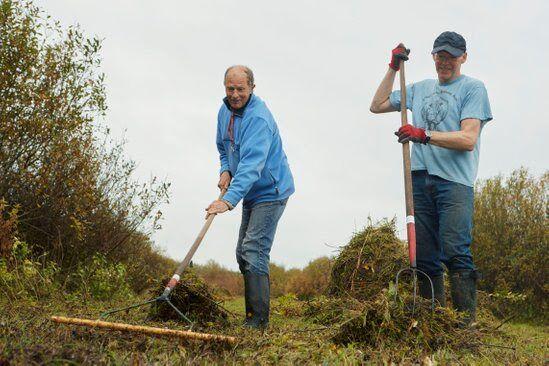 Groene vrijwilligers
