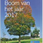 Boom van het jaar 2017