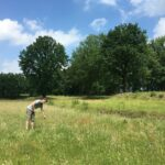 Netwerk Natuurpro richt zich op natuurinclusieve projecten
