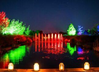 Mystery Gardens in Light - Appeltern