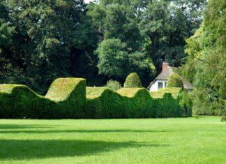 Landgoed Oranjewoud Friesland