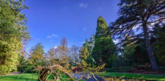 Arboretum Trompenburg legt voedselbos aan