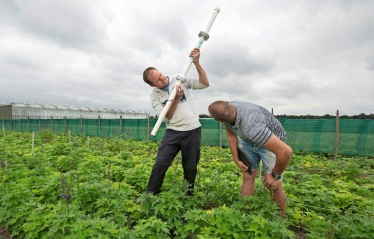 Weerpaal uit de akkerbouw levert data voor buitenbloemen