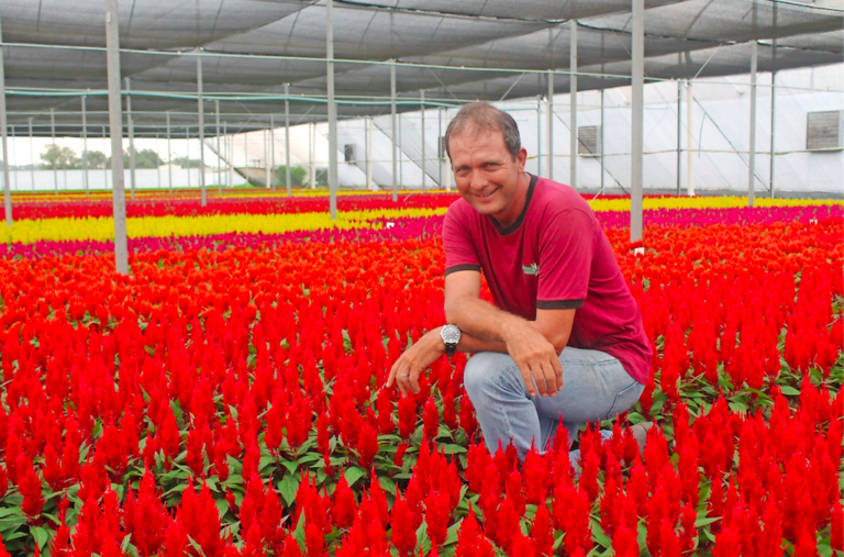 Expansie in Brazilië: Mijn droom is om alle planten op WPS te zetten