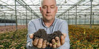 Teeltspecialist Roland van Hemert van Kiepflower