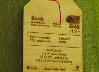 Gardenista I-tree Van Hall Larenstein