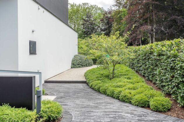 Vlaamse Tuinaannemer 2019