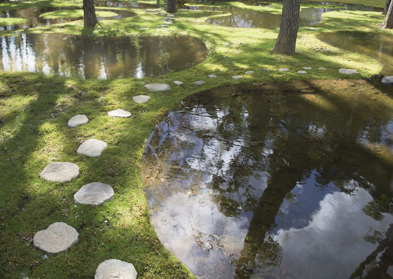 Japanse watertuin