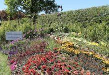 Postzegeltuin Gardenista 2019 - Blaas me bont