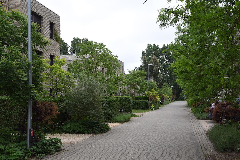 Eridanusstraat Groningen Emiel van den Berg