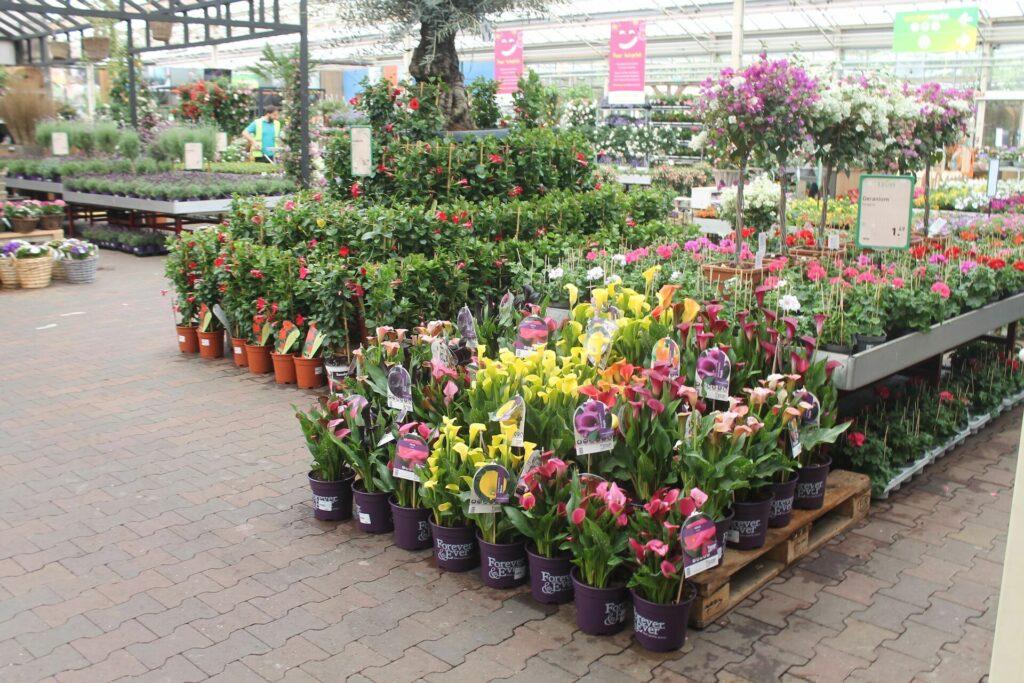 Tuincentrum met visueel aanbod