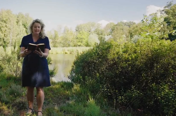 Marinke Steenhuis - veranderend landschap