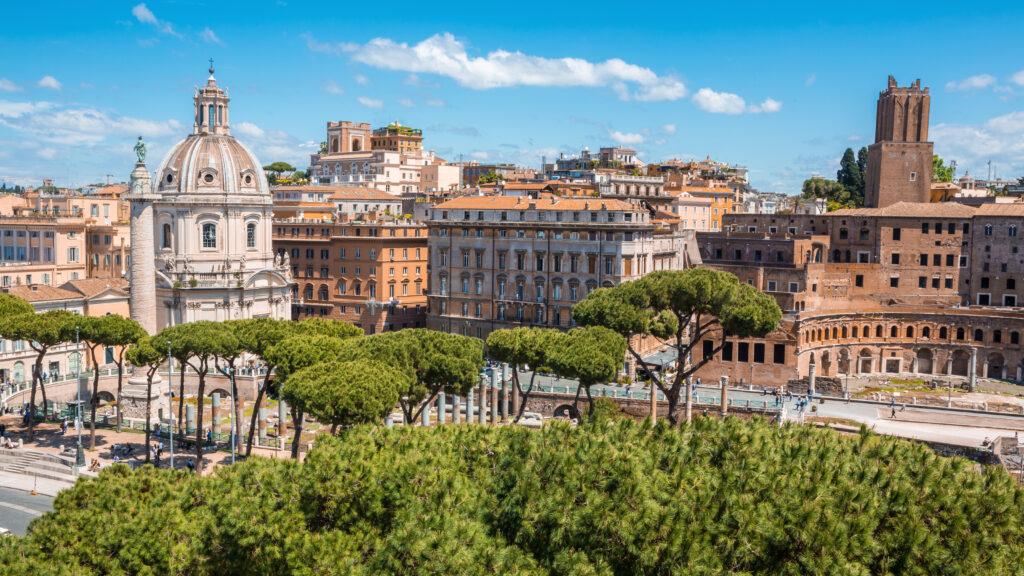 Nog niet aangetaste Pinus pinea in Rome