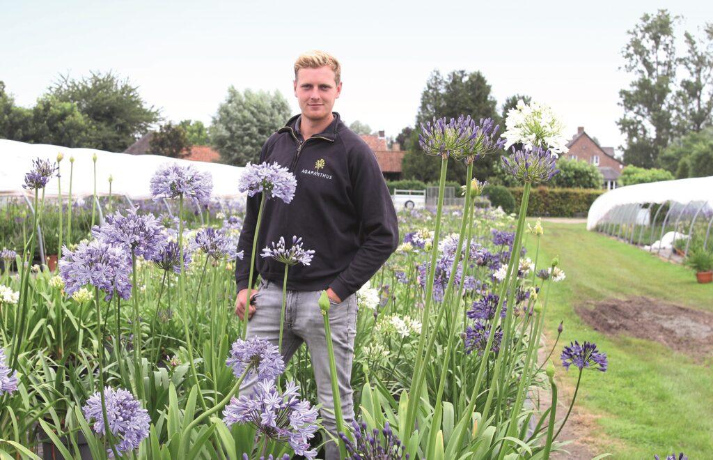 Agapanthuskweker Tim Wyckstandt op zijn kwekerij